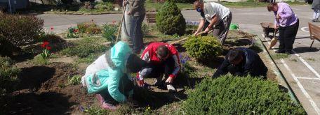 Práca na dvore - okopávanie a sadenie v skalke (21.04. 2020) - DSC02662